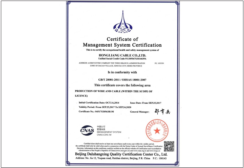 Certificate of Management System Certification